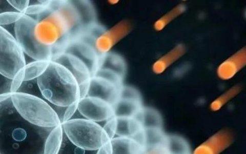 NADH在NMN抗衰家族中有着什么样的地位?