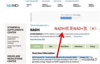 NADH+氢