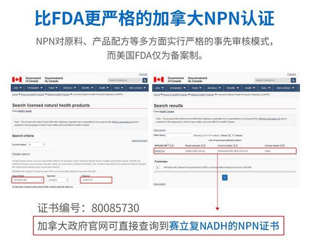 比FDA更严格的加拿大NPN认证,在加拿大政府官网可直接查询到赛立复NADH的NPN证书