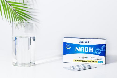 一切外敷都需内服加持,我开始将NMN替换成线粒体素NADH了