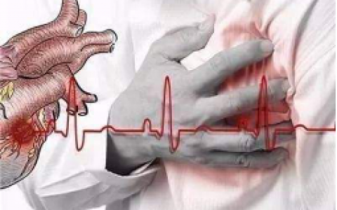 "NADH研究   ""血管黄金""线粒体素对心脑血管有多大的帮助?"